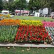 四季折々819  大通公園の秋のフェスト