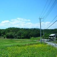 田植え時期の田舎とのんのんびよりの景色