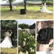 CAVE D'OOCI Wedding...18.5.27...