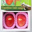 鉢植え栽培で美味しい◇◆べっぴんマンゴー◆◇鹿児島県大崎町