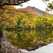 十二湖の紅葉