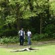 箱根彫刻の森美術館その4    投稿者:佐渡の翼