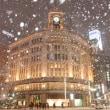 大雪の都心