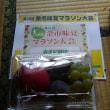 果物だらけのマラソン大会  ~第35回余市味覚マラソン参戦記~