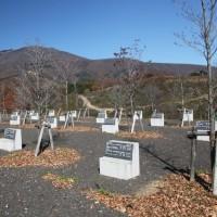 「不忘平和記念公園」に立って