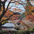 善峯寺の紅葉(2)