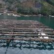 三重県 白石湖 「ロッジ山水」