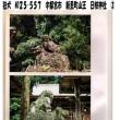 狛犬 No25-557  宇都宮市 新里町山王 日枝神社②