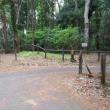 サイクリング:藤沢大和自転車道で共和橋まで