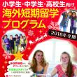 トビタテ!留学JAPAN 報告会のお知らせ
