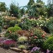 花菜ガーデンへ