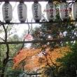 2017 紅葉の京都西山を散策~♪
