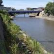 浅野川、東大通り。中島大橋仮橋。アーチがなくなったの存在感が薄い。