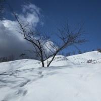 雪景色   Ⅲ