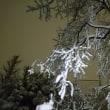 雪で混乱の巻