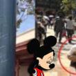 上海ディズニー、食べ物の持ち込みを禁止!
