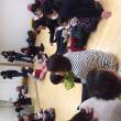サンプラザ中央ライフカレッジ 1歳児の親子知能あそび~日本の森のアロマ~2月