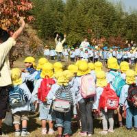 秋の楽しい遠足だよ。 ~大島保育園~
