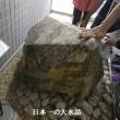 九州大学伊都キャンパス散策(福岡市西区)