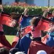 『早稲田大学よさこいチーム東京花火』 湘南よさこい祭り 2018