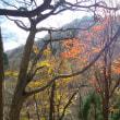 晩秋の「赤谷山」へ