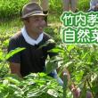 新春 自然菜園セミナー2/10(日)『コンパニオンプランツの混植で、少量多品目の無農薬家庭菜園の始め方』