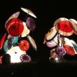 10月21日(土曜日)「観月祭」(てまりさん)