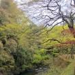 京都 ~ 自然環境に恵まれた街