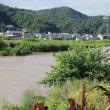 大雨警報…2016年6月を思い出す、まさか福山で洪水なんて…が実際に起った!