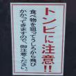 【競輪】日本選手権・決勝
