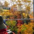 【大雪山国立公園・旭岳紅葉情報】チングルマの赤と木々の黄色