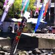 GW 杖立 鯉のぼり ツーリング