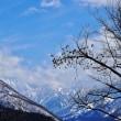 雪深い県道剱岳公園線(伊折~馬場島間は冬季通行禁止)を登っていく(1)・・・上市町・県道剱岳公園線