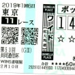 2019年 京都記念、共同通信杯、クイーンC 反省