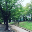 晴れて公園!