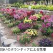 鹿児島 4月のイベント・祭り / 3月 24日~5月6日 長島花フェスタ