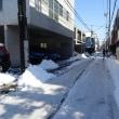 東京の雪 エライコッチャ! (その2)