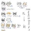 2月22日ネコの日なので。我が家の19匹のネコ話