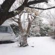 いきなり雪国の景色!