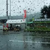 雨に バカにされる二人