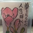 『春の花絵手紙』