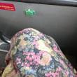 横座りのバス‥……
