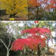 伊賀上野と曽爾高原