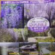 2017年鴻心館夏合宿《1日目》ハイキング《みやまの里森林公園》