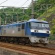 2018年6月17日 東海道貨物線 東戸塚 EF210-105 1155レ