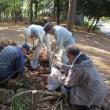 樹林地作業(1108)