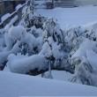 関東に大雪