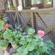 猫専用ベランダの柵