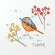 かわいい鳥、ジョウビタキ
