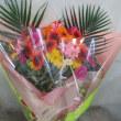 ガーベラ55本の花束をお作り致しました。(お誕生日用)